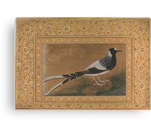 Spotted Forktail, Folio from the Shah Jahan Album , Painting by Abu'l Hasan, india Canvas Print