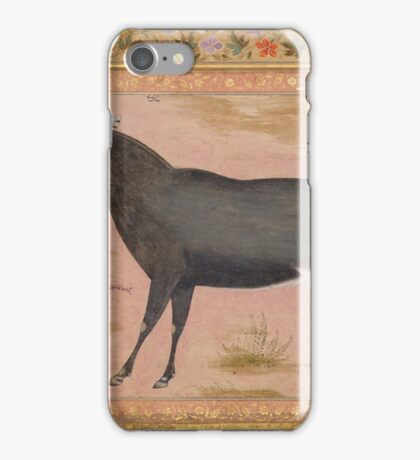 Study of a Nilgai (Blue Bull), Folio from the Shah Jahan Album iPhone Case/Skin