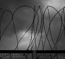 Borders... by Angelika  Vogel