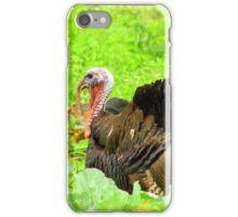 Male Turkey iPhone Case/Skin