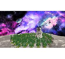 Astro Turf Photographic Print