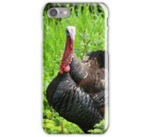 Turkey With Fanned Tail Feathers iPhone Case/Skin