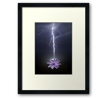 lotus love Framed Print