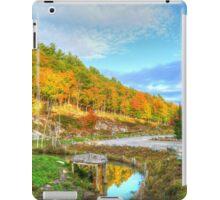 Beautiful Autumn Day iPad Case/Skin