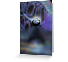 lavender reflection  Greeting Card