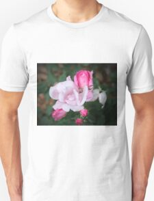 Roses In Different Stages Unisex T-Shirt