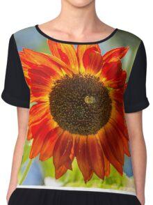 Sunflower 5 Chiffon Top