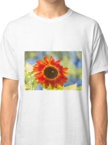Sunflower 5 Classic T-Shirt