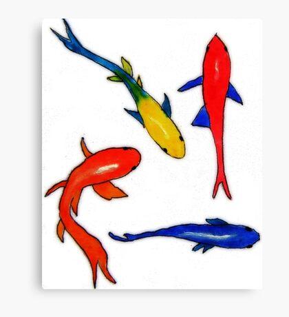 Several colorful fish swimming  Canvas Print