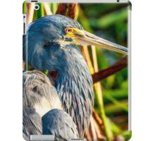 Tricolored Heron at Wakodahatchee iPad Case/Skin