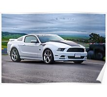 Saleen Ford Mustang 302 Poster