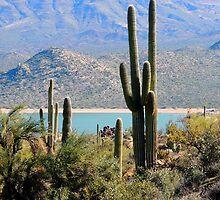 Bartlett Lake Arizona by Gordon  Beck