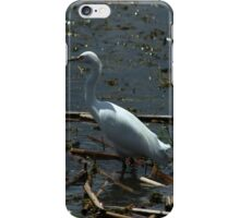 Great Heron on the Shore of a Lake iPhone Case/Skin