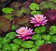 Among the Lily Pads by Kathy Weaver
