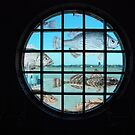Fishy Window by John Schneider