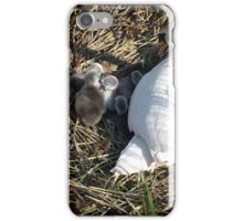 Here they are.. iPhone Case/Skin