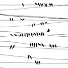 City Lines by Aleksandra Kabakova