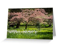 Blossom & Blooms Greeting Card