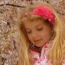 Jasmine And Cherry Blossom by Fara