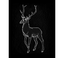 Nightmage Stag Photographic Print