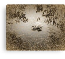 Grace - Dancing Swan Canvas Print