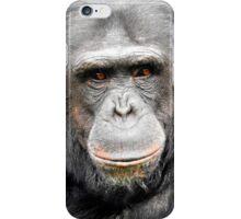 Elder Chimpanzee iPhone Case/Skin