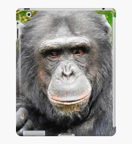 Elder Chimpanzee iPad Case/Skin