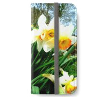 Daffodil  iPhone Wallet/Case/Skin