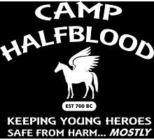 Camp Halfblood Photographic Print