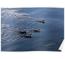 Almost Synchronized Swimming  Poster