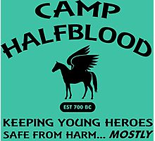 Camp Halfblood in Black Photographic Print