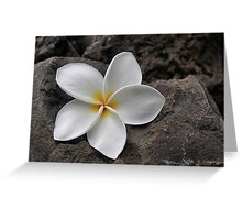 Delicate Induration Greeting Card