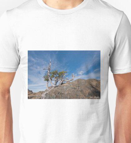 Weathered Fir Snag Growing on a Boulder Unisex T-Shirt