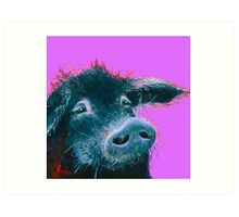 Happy Black Pig painting on purple Art Print