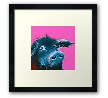 Black pig painting on hot pink Framed Print