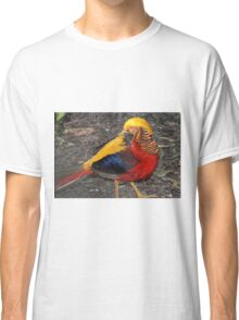 Bird Of Many Colors Classic T-Shirt