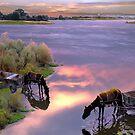 Watering Reflections by Igor Zenin