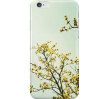 Migratory Sunshine iPhone Case/Skin