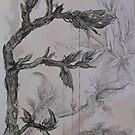 medley of plants by evon ski