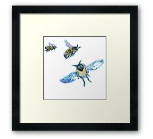Three flying bees painting Framed Print