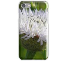 Star Thistle Begins Its Bloom iPhone Case/Skin