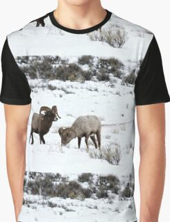 Bighorn Graphic T-Shirt