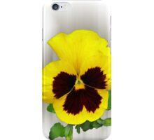 burgundy yellow pansy iPhone Case/Skin