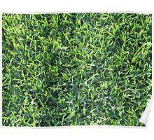 GRASS Poster