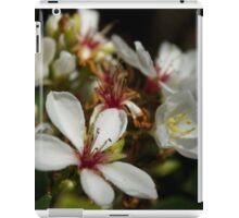 Autumn Blooms iPad Case/Skin