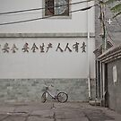 Truth and Lies in Beijing No.9 by Alex Fricke