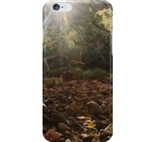 Ghostly Rays iPhone Case/Skin