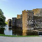Beaumaris Castle, Anglesey, N.Wales by AnnDixon