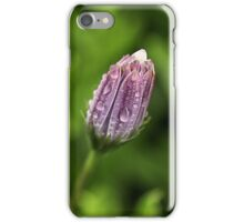Daisy cover iPhone Case/Skin