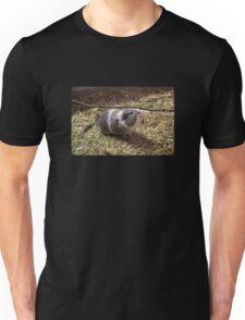 Guinea Pig Pet Sticker Unisex T-Shirt